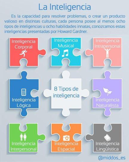 infografia-8-tipos-de-inteligencia
