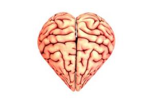 inteligencia-emocional-corazon