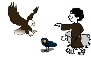 aguila cuervo pastor